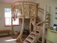 Tree loft made bigger and really sturdy for full size adults office or reading space