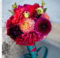 these look like some of the dahlias and colors we have, would like more greens added