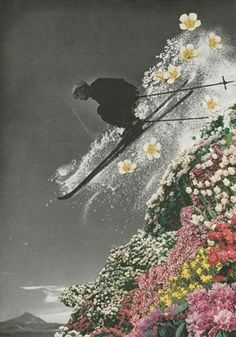 """Another use of black and white and flower collage. Inspiring collage for Wild Art Journaling - """"Spring Skiing"""" by Sarah Eisenlohr, get it here. Collage Kunst, Art Du Collage, Love Collage, Surreal Collage, Collage Design, Collage Artists, Photomontage, Photoshop, Collages D'images"""