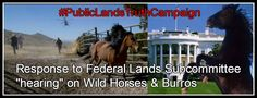 "Response to Federal Lands Subcommittee ""Hearing"" on Wild Horses & Burros – Cecil's Revenge Tweet Sheets – It's time to Storm!"