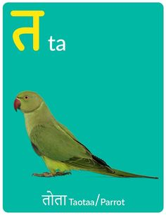 "Teach your kids Hindi letter ""त"" and words starting with त with this high-quality eBook. This Hindi Varnamala (alphabet) ebook is simple yet structured enough to enhance your child's language learning experience. Hindi Worksheets, 1st Grade Worksheets, Preschool Worksheets, Hindi Alphabet, Suits Quotes, Learn Hindi, Hindi Words, Letters For Kids, Free Preschool"