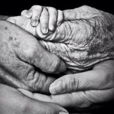 Hands Black and White Photography - 5 Générations R Julien Gracq, Photo Main, Foto Fun, Foto Baby, Jolie Photo, Pics Art, Family Pictures, Family Images, Great Photos