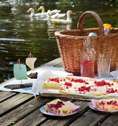 Rezept Aprikosen-Johannisbeer-Quarkkuchen