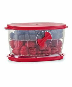 Progressive Berry Keeper | Unique divider prevents bruising, adjustable vent regulates air circulation/moisture, rinse and store produce directly in the container, water reservoir in base keeps produce moist