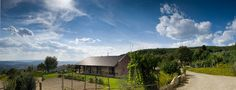 """The #sky is a """"winefield"""". #Pomaio 's winery"""