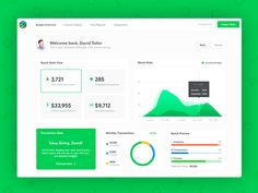 Cashtrackr - Welcome & Main Page by Stelian Subotin