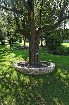 Die Windsor® Mauer Eignet Sich Auch Als Tolle Baumumrandung, Die Auch Noch  Sitzplatz Im