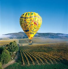 Balloon over the Yarra Valley