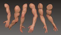 ArtStation - Practice   sculpting, Aleksandr Popov Arm Anatomy, Body Anatomy, Anatomy Art, Body Drawing, Drawing Faces, Drawings, Drawing Tips, Drawing Hair, Gesture Drawing