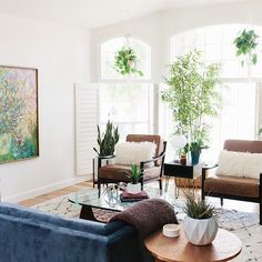 Plants by windows, chairs moved in