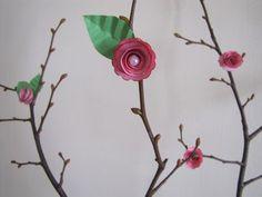 Flores de papel :lodijoella