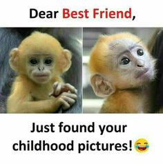 For my freind Very Funny Memes, Latest Funny Jokes, Funny School Memes, Some Funny Jokes, Funny Facts, Best Friend Quotes Funny, Best Friends Funny, Cute Funny Quotes, Best Friend Jokes