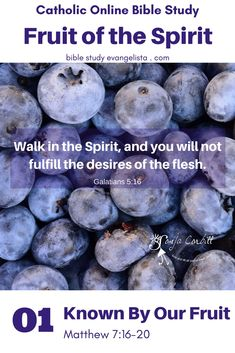 Jesus said they will know us by our fruit. Is the Holy Spirit producing fruit in me, or am I putting forth the rotten fruit of self-indulgence and self-reliance? Here's how to take a spiritual inventory with St. Paul in Galatians 5. Welcome...