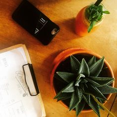 Detoxing at @roamers_berlin - Featuring #mujjo iphone wallet case - Available at mujjo.com