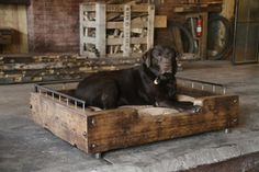 Custom Reclaimed Wood Dog Beds from Olga Guanabara in green beds furniture