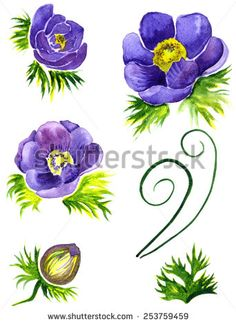Anemones flowers. Hand drawn watercolor painting - stock photo http://submit.shutterstock.com/?ref=1553807