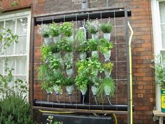 Hanging Herb Garden Ideas 21 most attractive diy hanging garden ideas to break the monotony