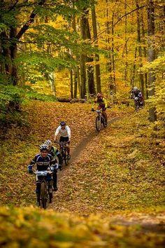 Fall mountain biking MTB XC Bike. http://WhatIsTheBestMountainBike.com - #WhatIsTheBestMountanBike