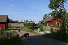 Come to our farmnear Flobby in Sweden and help us implement our permaculture design! - workaway.info