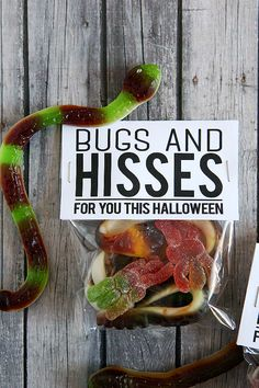 Bugs And Hisses Treat Bag Toppers - Halloween Cans, Halloween Treat Bags, Halloween Projects, Halloween Party Decor, Holidays Halloween, Happy Halloween, Preschool Halloween, Halloween 2017, Dessert Kabobs