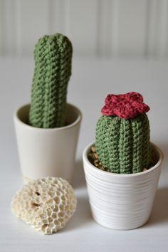 Virkade kaktusar - beskrivning ~ @Diagnos:Kreativ