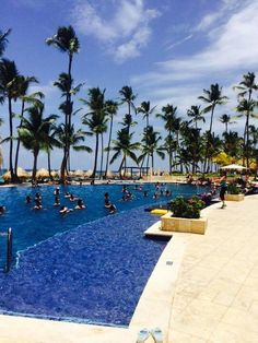 Teaching Vacations NRG2GO.NET  Do what you love in Paradise.