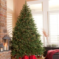 Classic Pine Full Pre-lit Christmas Tree - The Classic Pre-Lit Full Christmas Tree is available in several sizes and outfitted with lots of dazzling lights to cast a warm, festive illu...
