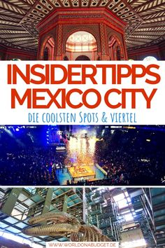 Mexico City: the best sights and coolest neighborhoods , Backpacking India, Backpacking South America, Honduras, Costa Rica, Beach Activities, Reisen In Europa, Group Travel, Mexico Travel, Riviera Maya