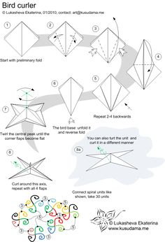 Bird curler diagram - Kusudama Me!