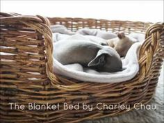 All about our Blanket Beds. Sometimes, the classics are the best.