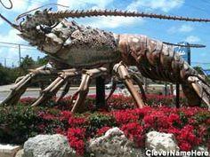 Giant Lobster, Islamorada, Fl. Check!