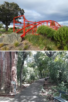 While housesitting in Feilding we took time to explore the area.  Our highlights were; Kowhai Park, Kitchener Park, Makino Bridge, Mason Family Rose Garden, and The Lookout. . #ontheroadkiwis #ontheroadnz #nz #newzealand #northisland #nzdestinations #kiwi_photos #kiwipics #digitalnomad #newzealandlife #myphotography #gardens #flowers #walking Great Walks, House Sitting, Garden Bridge, Kiwi, New Zealand, Farmer, Fields, Travel Tips, Things To Do