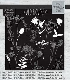 Crown Illustration, Garden Illustration, Love Monster, Plant Vector, Flower Studio, Web Themes, Outline Drawings, Vector Graphics, Botany
