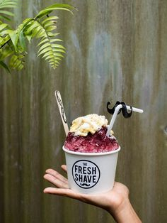 Farm-to-Ice: Inside Hawaii's Artisanal Shave Ice Craze Snow Cone Syrup, Snow Cones, Ice Cream Menu, Ice Cream Recipes, Shaved Ice Recipe, Shave Ice Syrup Recipe, Snow Cone Stand, Neon Food Coloring, Ice Truck