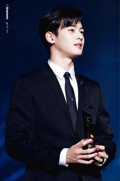 dedicated to astro's cha eunwoo and moonbin. Cha Eun Woo, Handsome Faces, Handsome Boys, Beautiful Boys, Pretty Boys, Cha Eunwoo Astro, Lee Dong Min, Park Bo Gum, Cute Asian Guys