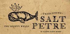 Fonts - Saltpetre by Magpie Paper Works - HypeForType Font Shop