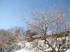 Winter, bij van de Valk in Spier 2016.