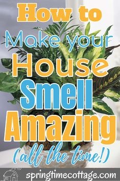 Diy Home Cleaning, Household Cleaning Tips, House Cleaning Tips, Spring Cleaning, Cleaning Hacks, House Smell Good, House Smells, Cleaners Homemade, Diy Cleaners