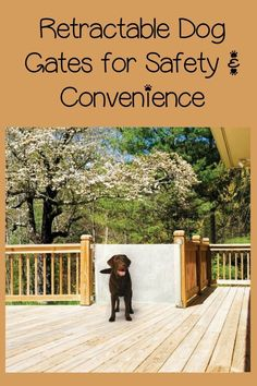 For ease of use and safety, you can't beat retractable dog gates. Retractable dog gates are a variation of the standard mounted gate but easier to use.
