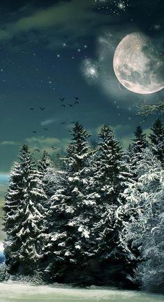 Moon in winter- beautiful Snow Scenes, Winter Scenes, Winter Moon, Cozy Winter, Nature Landscape, Moon Shadow, Moon Pictures, Moon Pics, Moon Magic