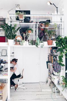 Plants all over in small space apartment I wenig platz, raumlösung für kleine wohnung