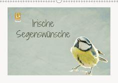 In diesem Kalender finden Sie Fotografien von heimischen Vogelarten, fantasievoll und wunderschön bearbeitet. Zusätzlich wurden diese ansprechenden Bilder mit irischen Segenswünschen versehen. Die Redaktion hat diesen Kalender für die CALVENDO Gold-E
