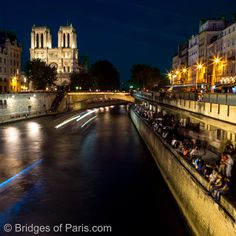 Parisian party spot on the Seine river. Notre Dame and Petit Pont in the background