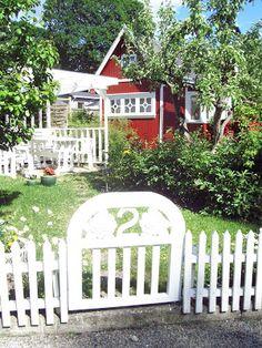 Rosetrend: Min kjære nabo Rodeløkka kolonihage