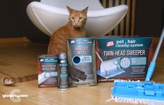 Spiffing Up for Christmas with Simple Solution's Pet Hair CleanUp System: GIVEAWAY! 5 winners plus the prize is doubled so each winner can donate to a shelter!