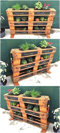 Plans of Woodworking Diy Projects - Creative Beginners Friendly Woodworking DIY Plans At Your Fingertips With Project Ideas, Tips and Tricks Get A Lifetime Of Project Ideas & Inspiration! Pallet Garden Ideas Diy, Pallets Garden, Diy Pallet Projects, Woodworking Projects Diy, Unique Woodworking, Pallet Gardening, Organic Gardening, Woodworking Plans, Garden Ideas With Pallets