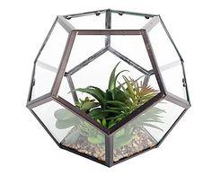 "Mini skleník ""Hexagon"", Ø 23, výš. 19 cm"