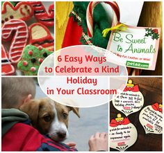 Want to spread some holiday cheer in your classroom during these last school days before Winter break? Click below for super-easy and compassionate ways to be festive. #holidays #teachers #animalrights #humaneeducation #kindness