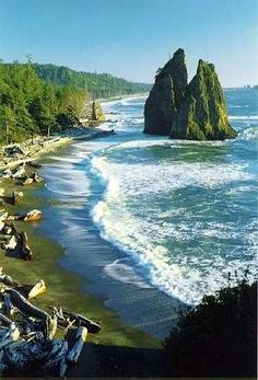 """The """"Washington Coast Trail"""" in Olympic National Park,Washington State, USA. This would be a scenic national park adventure on a trip to the Pacific Northwest. Vacation Destinations, Vacation Spots, Vacations, Parc National, National Parks, National Forest, Places To Travel, Places To See, Places Around The World"""
