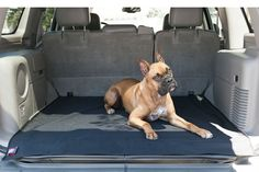 Universal Waterproof SUV Cargo Liner By Majestic Pet Products Made in the USA Durable cargo liner designed with convenient features in mind Made from waterproof Pet Car Seat Covers, Unisex Baby Clothes, Furniture For Small Spaces, Boys Shoes, Cleaning Wipes, Your Pet, Bag Accessories, Baby Strollers, Pets
